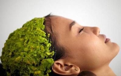 Cứu lấy mái tóc sơ rối bằng mặt nạ tóc từ những nguyên liệu thiên nhiên